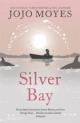 Silver Bay. Серебристая бухта